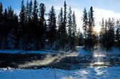 Dampende rivier in de winter — Stockfoto