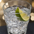 Gin Tonic Cocktail — Stock Photo #7653278