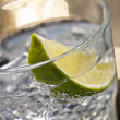 Gin Tonic Cocktail — Stock Photo