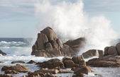 Sea rock is breaking powerful wave — Stock Photo