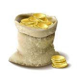 Bag with golden money — Stock Vector