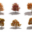 3d autumn trees pack with shadows — Stock Photo