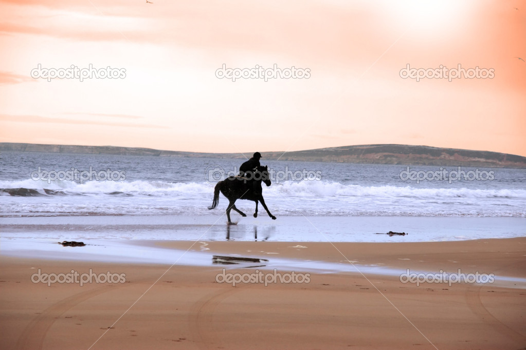 Silhouette of a horse and rider galloping along shore — Stock ...