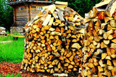 Heaps of firewood at the countryside — Stock Photo