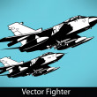 Vector Fighter — Stock Vector