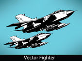 Vector Fighter — Stock Vector