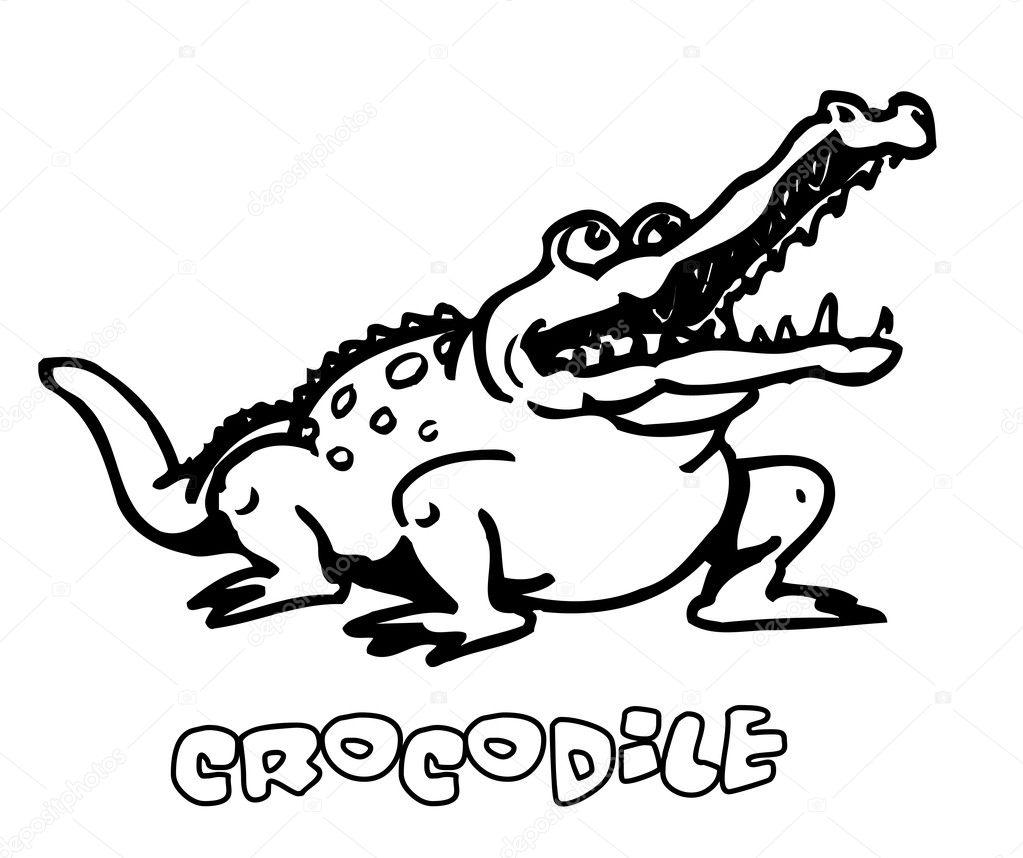 可爱的鳄鱼-矢量图— 矢量图片作者