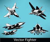 Vector Fighter Set — Stock Vector