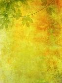 用葡萄叶子浪漫 grunge 背景 — 图库照片