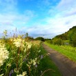 Scenic rural landscape with a path — ストック写真