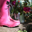 Stock Photo: Pink wellingtons in garden