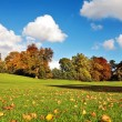 Beautiful Autumn in the Falkirk Park, Scotland — Stock Photo