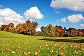 Hermoso otoño en el parque de falkirk, escocia — Foto de Stock