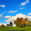 Beautiful Autumn in the Falkirk Park, Scotland — Stock Photo #6952004