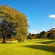 Beautiful Autumn in the Falkirk Park, Scotland — Stock Photo #6952105