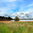 Sceninc rural landscape with a lake — ストック写真