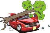 Tree crash a car — Stock Vector