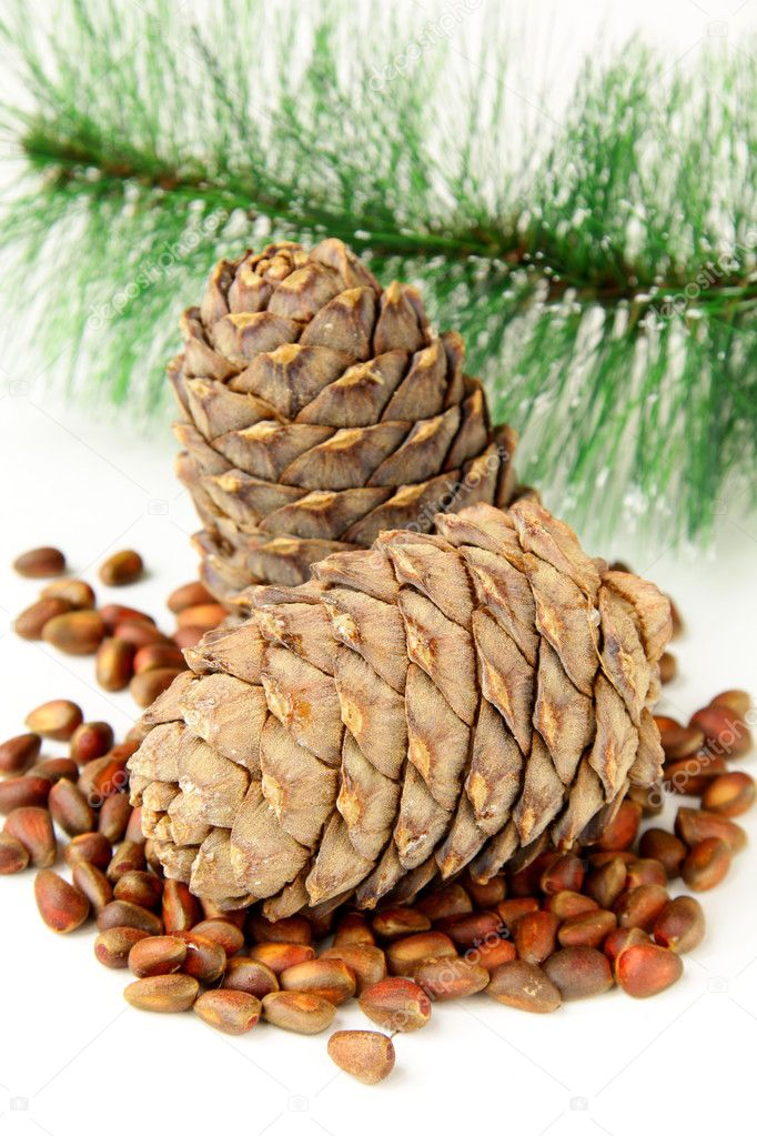 how to cook pine nuts