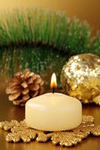 Christmas decoration, fir sprig, candle and cones — Stock Photo