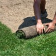 Stock Photo: Laying sod