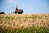 Wheat field and windmill — Stock Photo