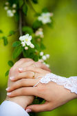 Wedding Rings on Bride and Groom — Stock Photo