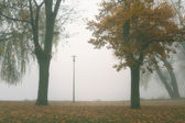 Lake in the fog — Stock Photo