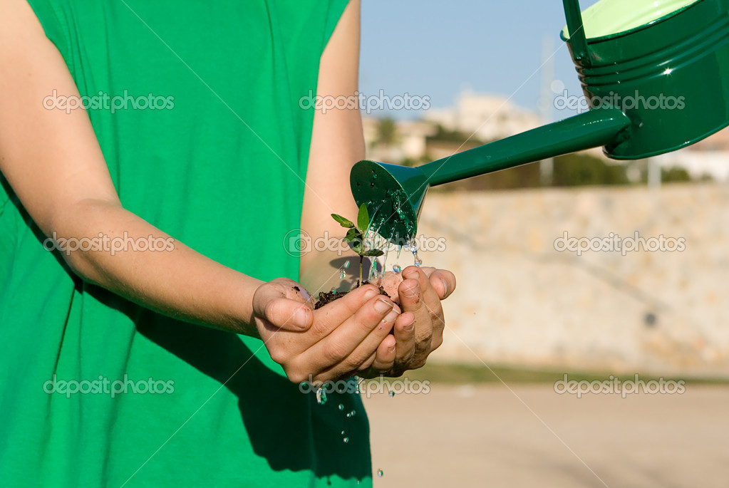 Conservation concept, child holding plant while watering it  Stock Photo #6949999