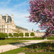 Spring in Paris. France — Stock Photo