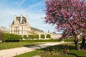 Spring in Paris. France — Stock Photo