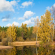 Autumn landscape at wood lake - Stock Photo
