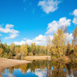 Autumn landscape at wood lake — Stock Photo
