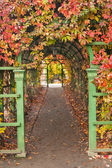 Pergola in autumn park — Stock Photo