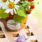 Camomile and wild strawberry — Stock Photo #7954522