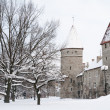 Stock Photo: View of old city in Tallinn. Estonia