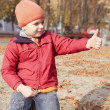 Boy walking in autumn park — Stock Photo #7953032