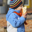 Royalty-Free Stock Photo: The kid eats bread during autumn walk in the park