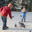 Stock Photo: Children fed pigeons in autumn city park