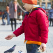 Kid throws bread to the pigeons autumn park — Stock Photo #7953054
