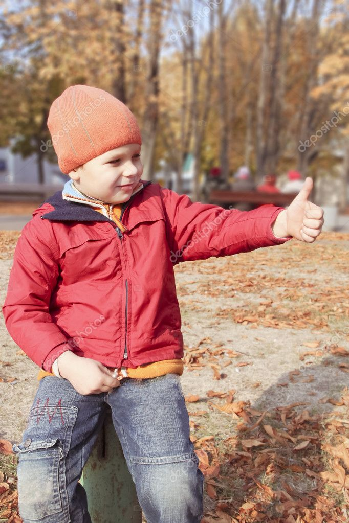 Boy walking in autumn park  Stock Photo #7953032
