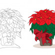 Vector christmas poinsettia — Stock Vector