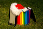 Electronic book reader wearing Santa's hat with row of books — Stok fotoğraf