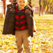 Boy playing with leaves at fall time — Stock Photo #7350987