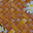 Frangipani or Plumeria orTempletree on rattan background — Stock Photo