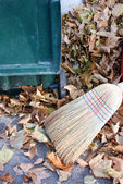 Broom and leaves — Foto Stock