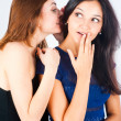 Gossiping women — Stock Photo #7063760