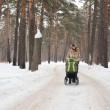 Young mother with baby carriage in winter forest - Stock Photo