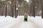 Ung mamma med barnvagn i vinter skog — Stock fotografie