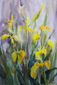 Watercolor painting of the yellow Iris flowers. — Stock Photo