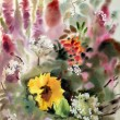 Watercolor painting of the beautiful flowers. — Stok fotoğraf